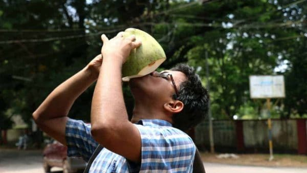 Reasons To Shift To Tender Coconut From Soft Drinks