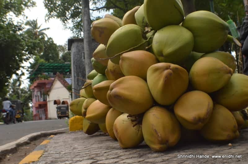 Fresh Tender Coconuts | Cellular Jail