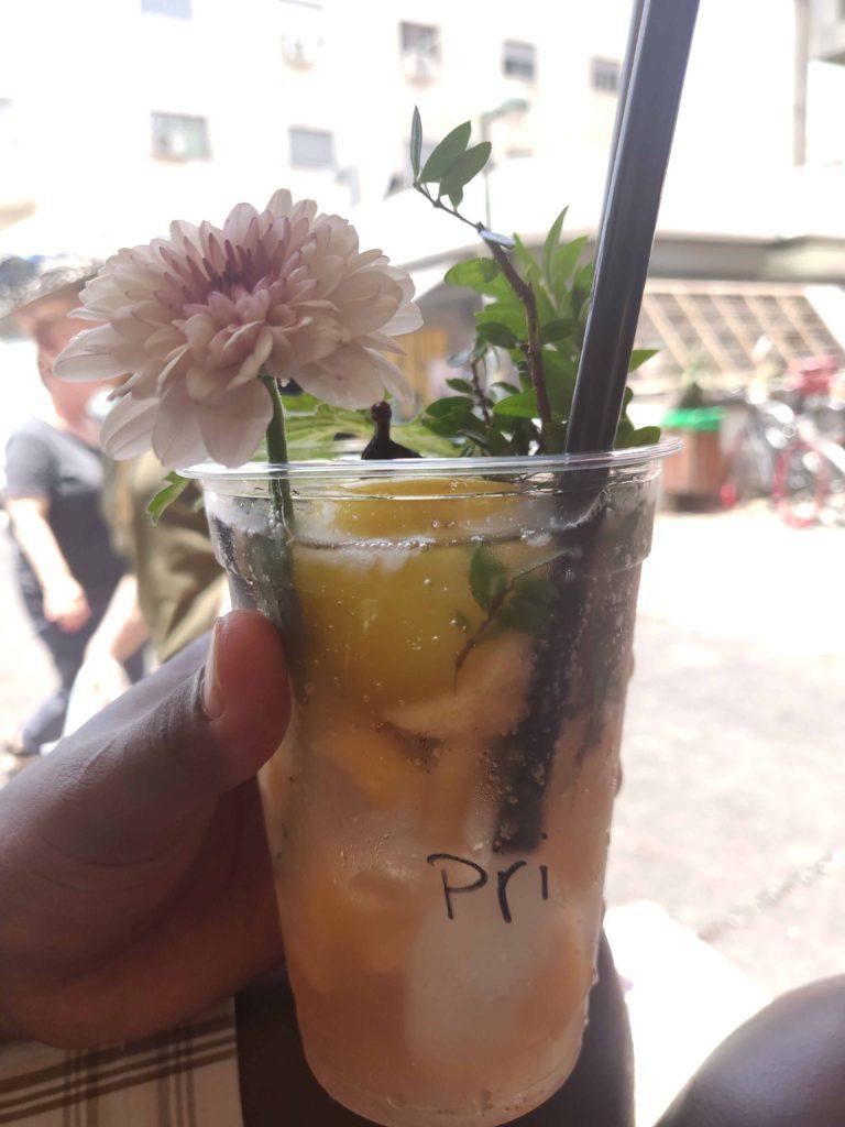 Fermented Fruit Soda 2