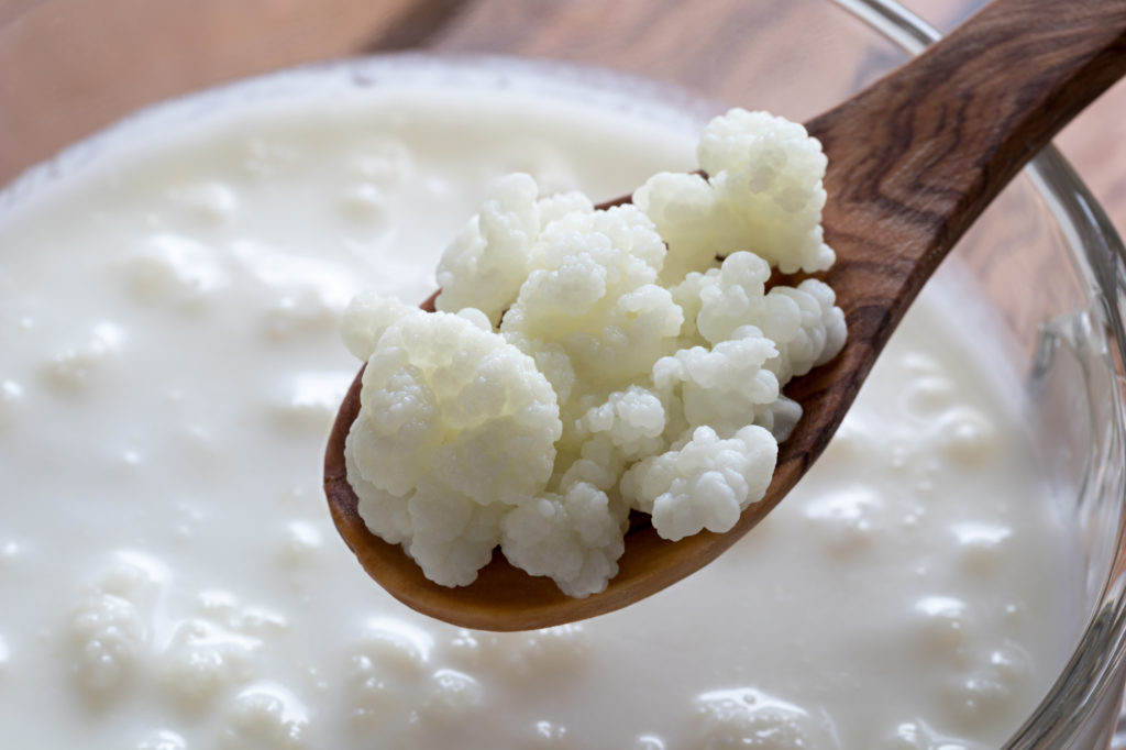 Kefir Grains On A Wooden Spoon Above A Jar Of Kefir