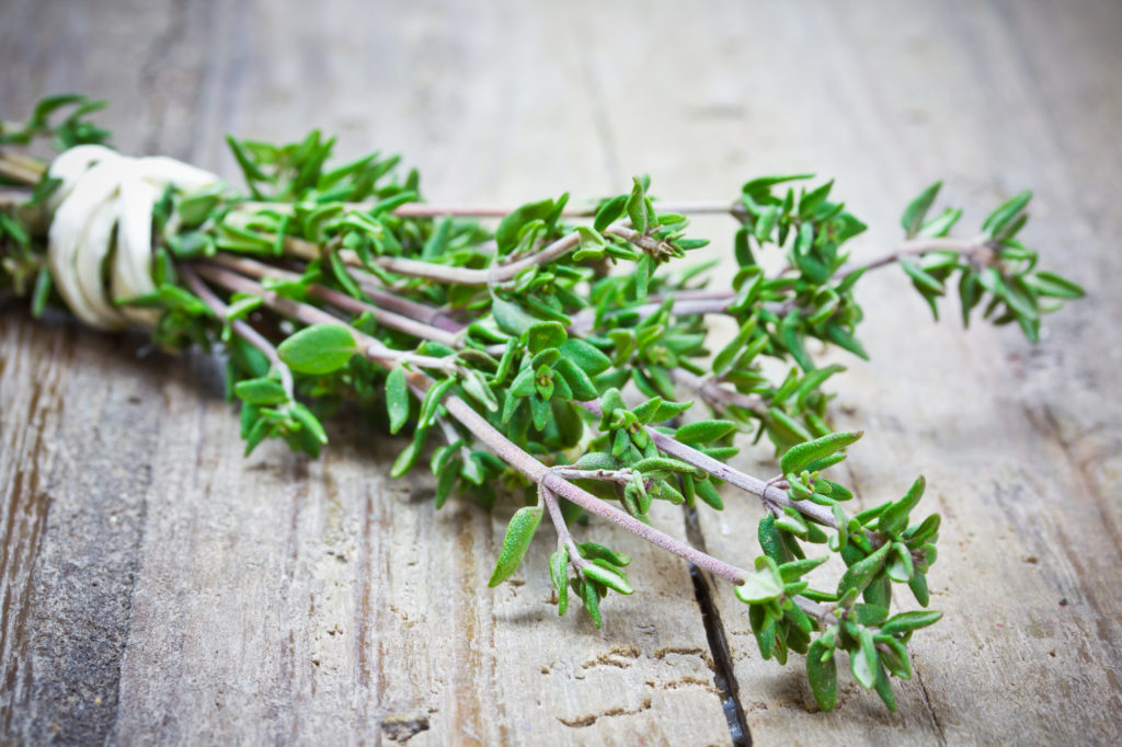 Health Benefits Of Using Thyme Herb